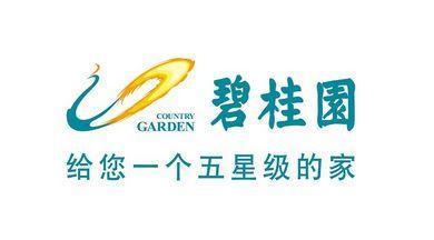 碧桂园太平洋景公司