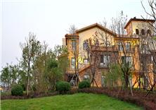 邯鄲紫岸售樓處景觀設計