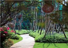 苏州阳光城·尹山湖示范区景观设计