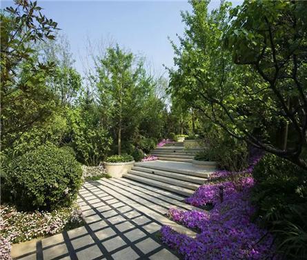 北京龙湖双珑原著