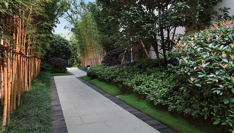 中庭绿化设计手绘