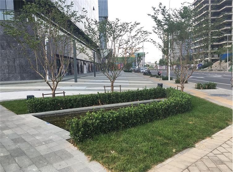郑州 建业智慧港案例_郑州 建业智慧港设计图_郑州 港