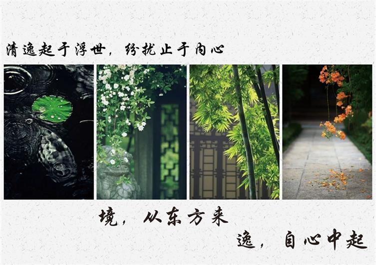 照片3.jpg