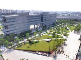 张江国创中心
