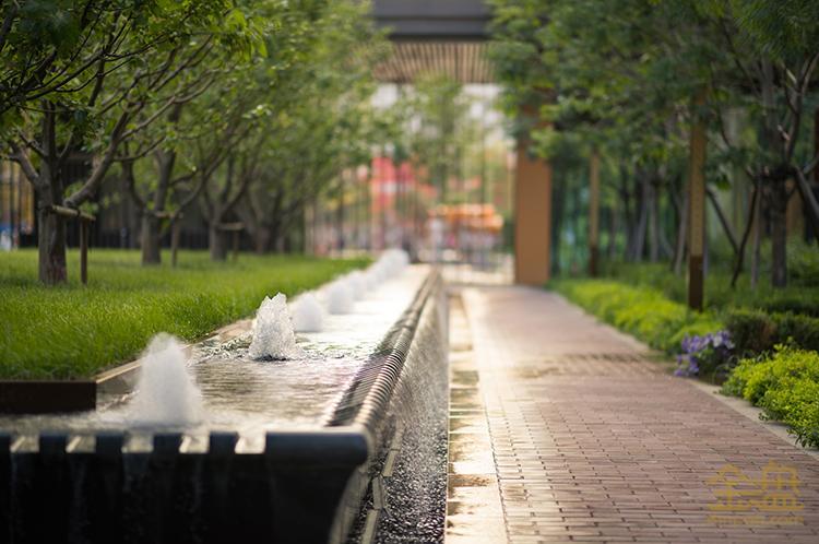 园区西入口水景.jpg