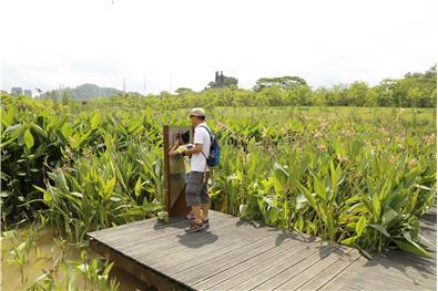大观湿地公园导览系统设计