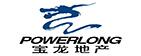 上海宝龙实业发展(集团)有限公司