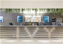 Ivy Restaurant and Lounge Bar(建筑设计)
