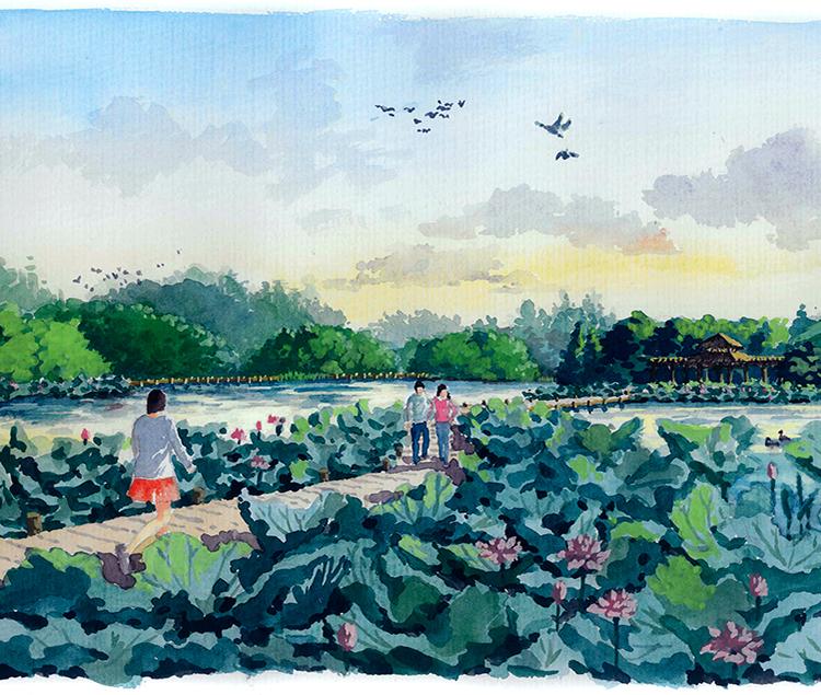 广州南沙湿地公园