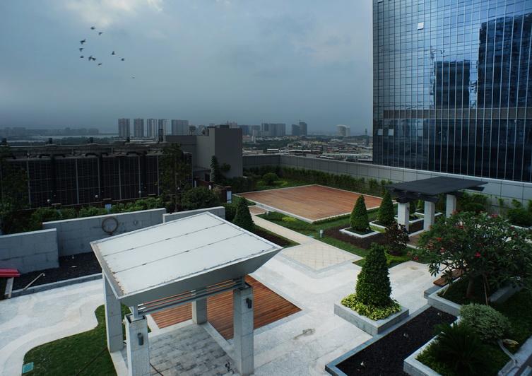 屋顶花园.JPG