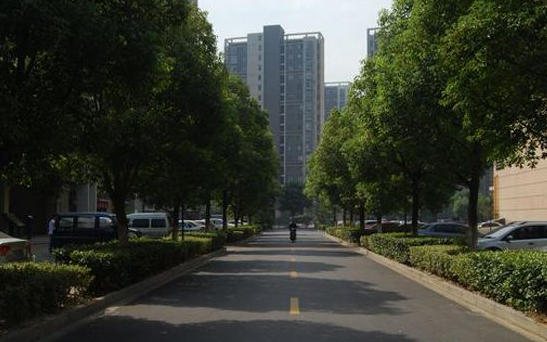 广州市白云区2017年重点...