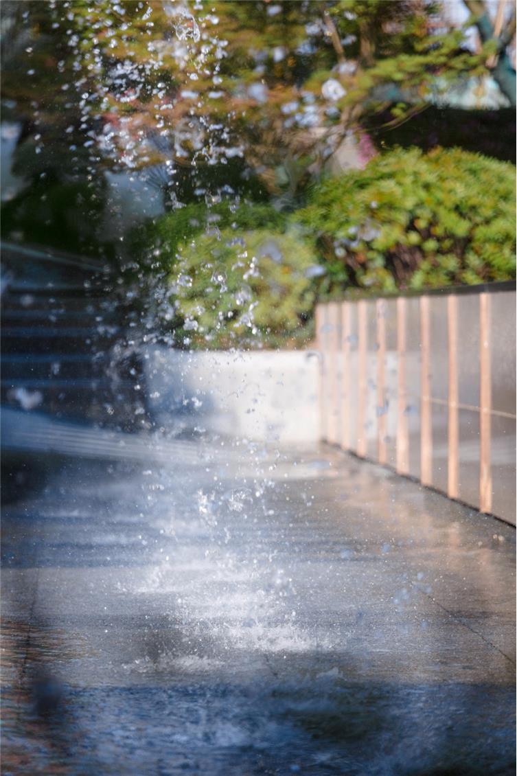 Holi河狸景观摄影-15_调整大小.jpg