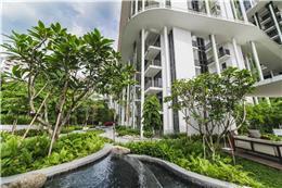 新加坡Tembusu