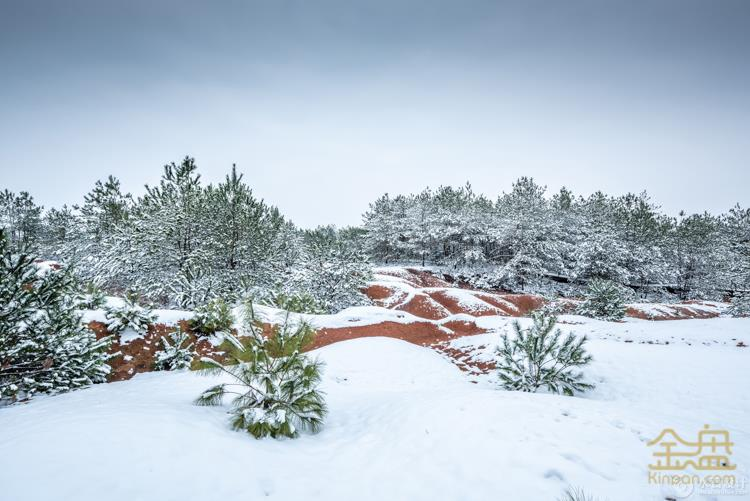 雪景 (4).jpg