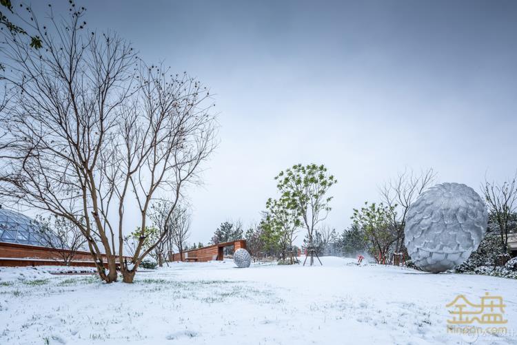 雪景 (2).jpg