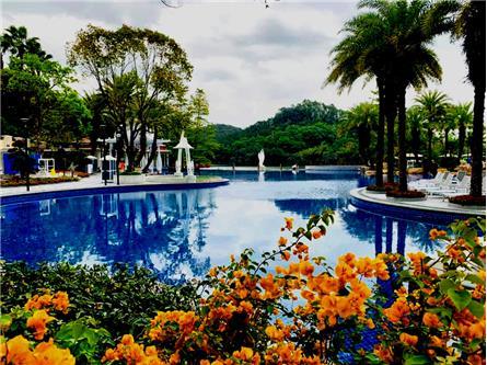 東莞 三正半山酒店溫泉景觀區