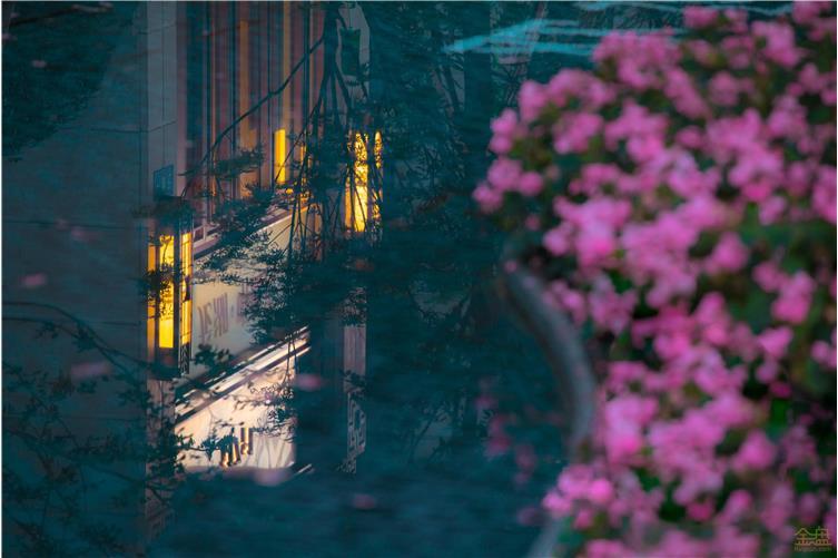Holi河狸-景观摄影-21.jpg