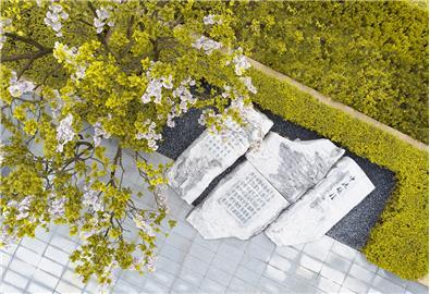 金科集美郡景觀規劃設計