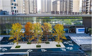 武汉雅居乐花园示范区