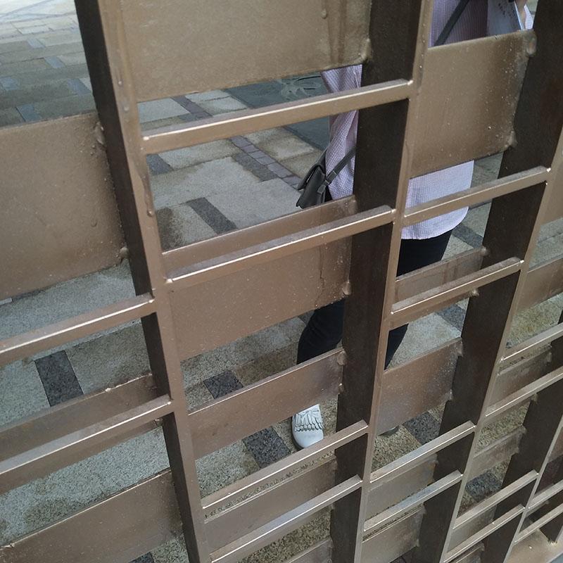金属铁艺门和隔扇