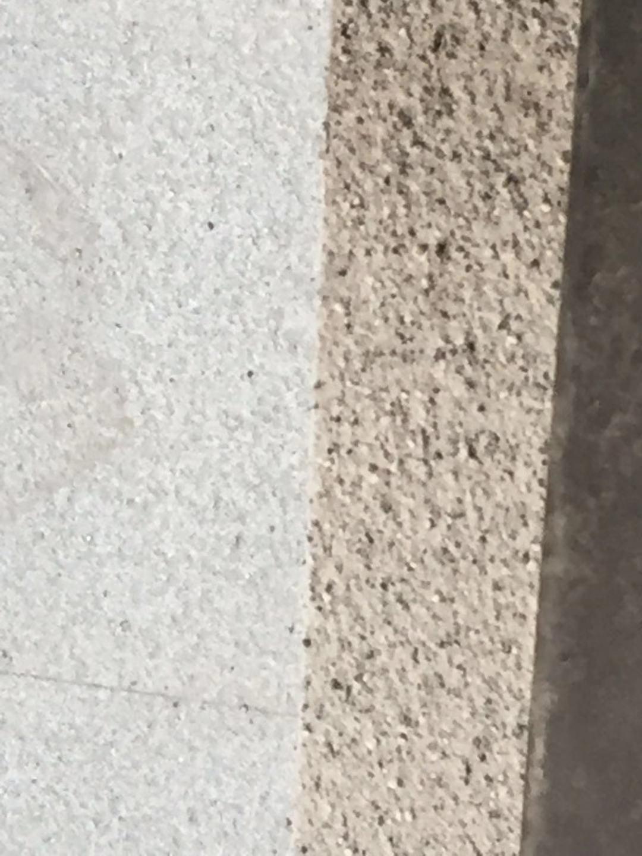 外墙真石漆涂料