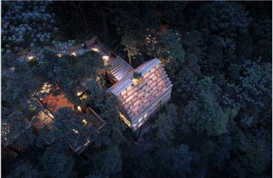 齊云山自由家樹屋
