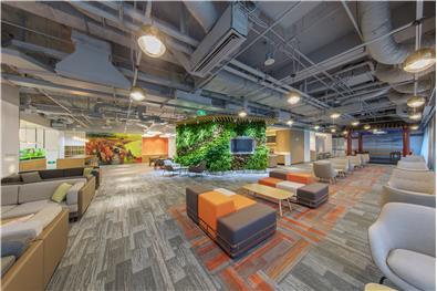 微软图书馆