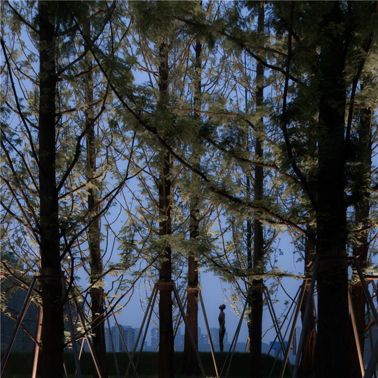 Holi河狸景观摄影-44.jpg