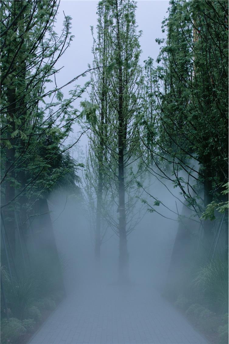 Holi河狸景观摄影-7.jpg