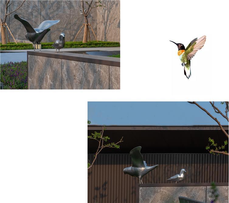 鸟副本.jpg