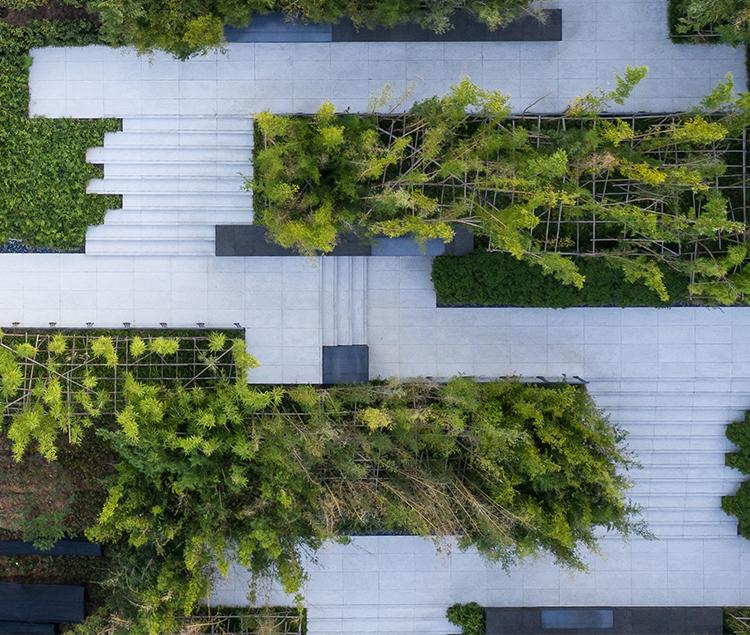 泰康·杭州径山竹茶园纪念园